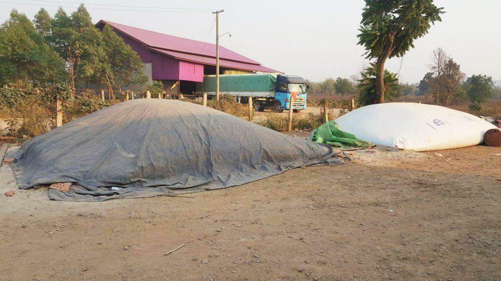 grain bagging in Myanmar